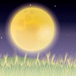 十三夜のイメージ図